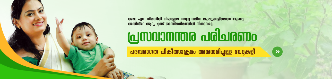 best ayurvedic hospital in kerala